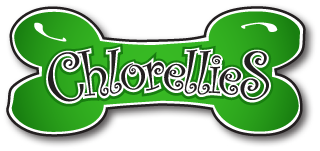 Chlorellies are the future of your dog's health!